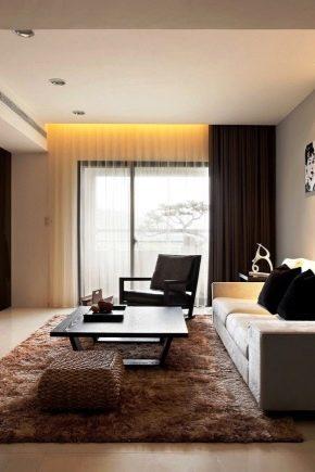 Conception de hall: subtilités de la décoration d'une pièce d'une superficie de 20 m².  m