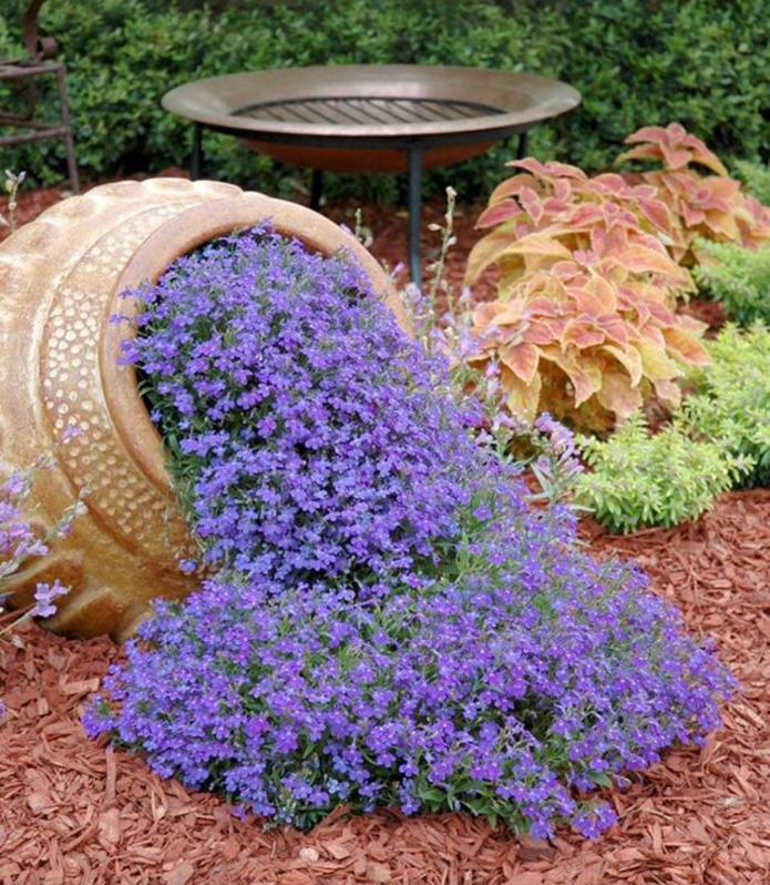 Décorations faites de fleurs et d'une cruche