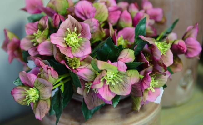 Les fleurs artificielles sont très populaires depuis de nombreuses années.