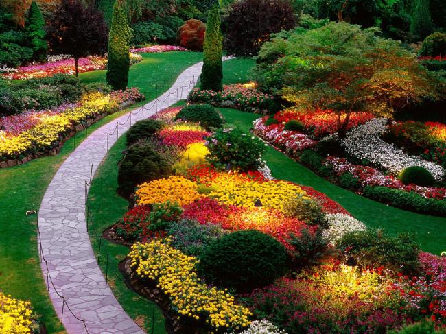 Le mixborder anglais est l'un des styles les plus raffinés.  Dans un tel jardin de fleurs, des formes de jardin avec de grandes fleurs et des espèces et variétés à petites fleurs sont combinées