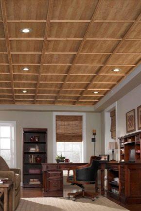 Panneaux de plafond : caractéristiques de choix