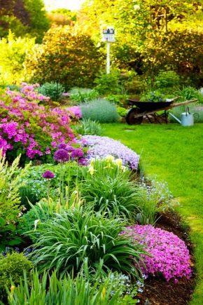 Parterres de fleurs pour une résidence d'été et une maison de campagne: types et leur conception