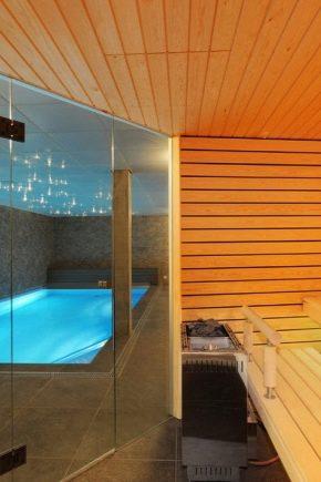Projet de bains publics avec piscine : exemples de conception