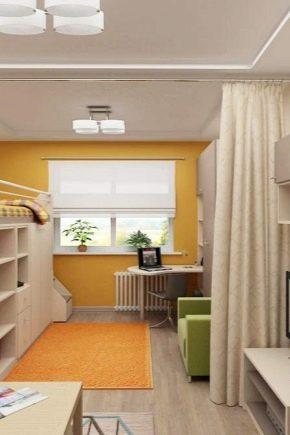 Zonage d'un appartement d'une pièce: règles, idées, solutions intéressantes