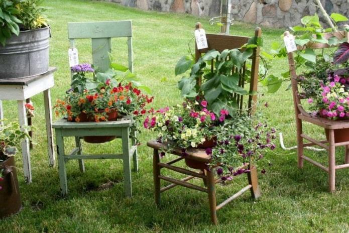 Des fleurs sur des chaises