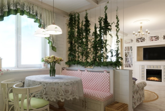 Plantes d'intérieur pour le zonage