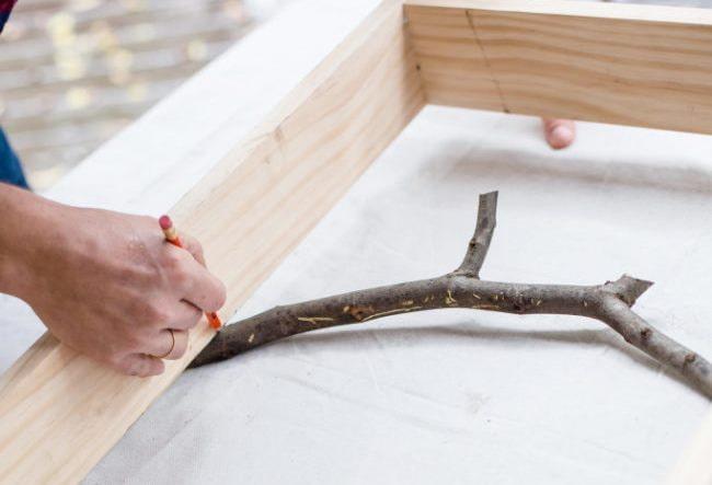 Détermination de la taille des branches