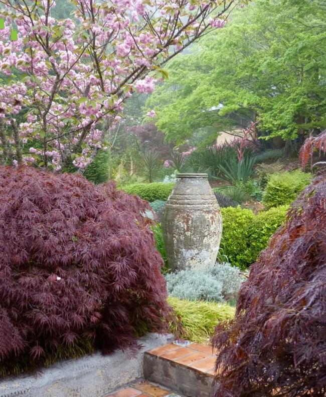 Une abondance de végétation thématique dans un jardin japonais