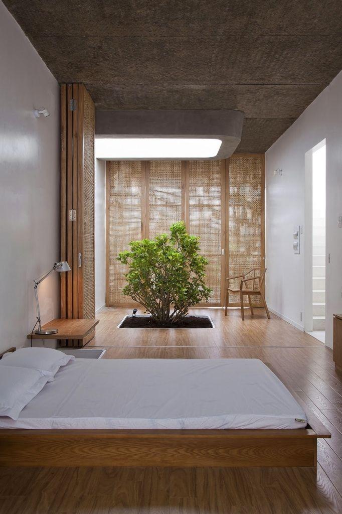 Un buisson vivant qui pousse hors du sol dans la pièce est un élément lumineux dans une chambre japonaise discrète