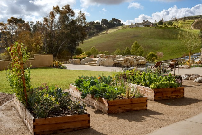 Lits de jardin : grands, intelligents, paresseux.  Le moyen le plus simple est de construire des lits intelligents sur une surface plane.