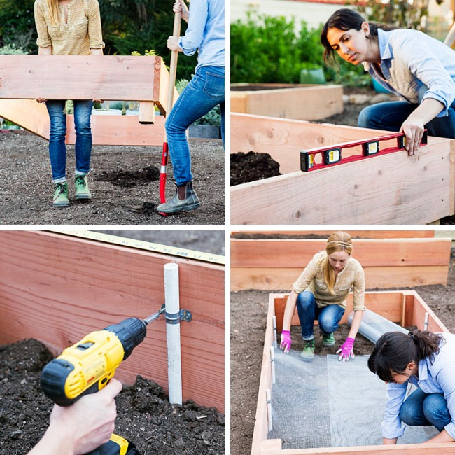 Lits de jardin : grands, intelligents, paresseux.  Lit de jardin paresseux à faire soi-même: étape 4-8 Nous installons fermement le lit en enterrant les poutres d'angle dans des trous de 12-15 cm.  Nous vérifions les côtés des lits avec le niveau du bâtiment (pour le fonctionnement normal du futur système d'irrigation).  Nous attachons des tuyaux en PVC sur les côtés de l'intérieur (pour les cerceaux avec filet ou film contre les intempéries et les oiseaux).  Tassez le sol et tapissez le fond d'un treillis métallique contre les taupes (et, selon les matériaux et la destination des lits, de géotextiles)