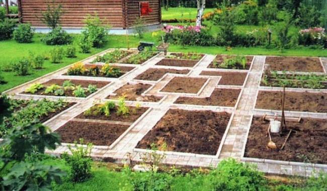 Lits de jardin : grands, intelligents, paresseux.  Potager à la française avec paresseux