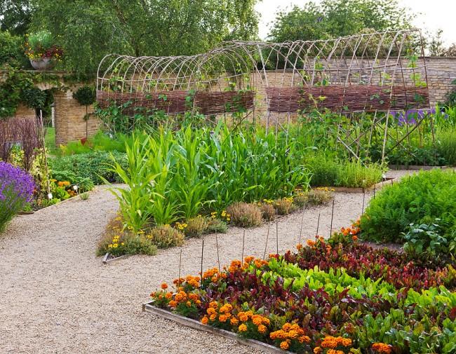 Fleurs dans la conception d'un petit jardin