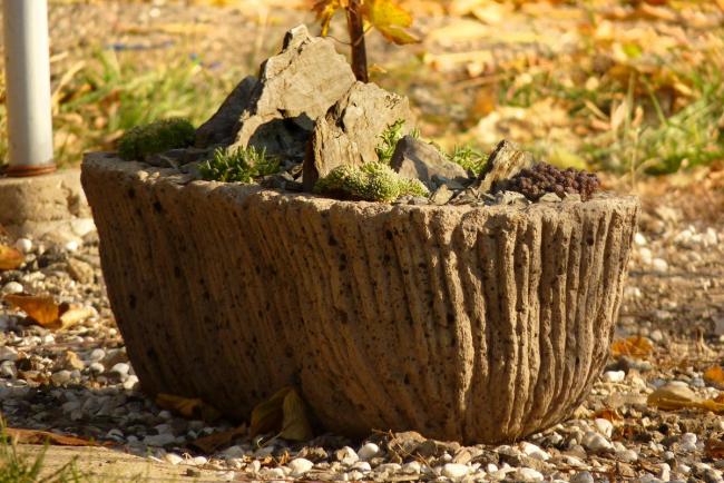 Toute souche ou pierre, si elle est correctement conçue, peut être un excellent élément de décoration pour votre jardin.