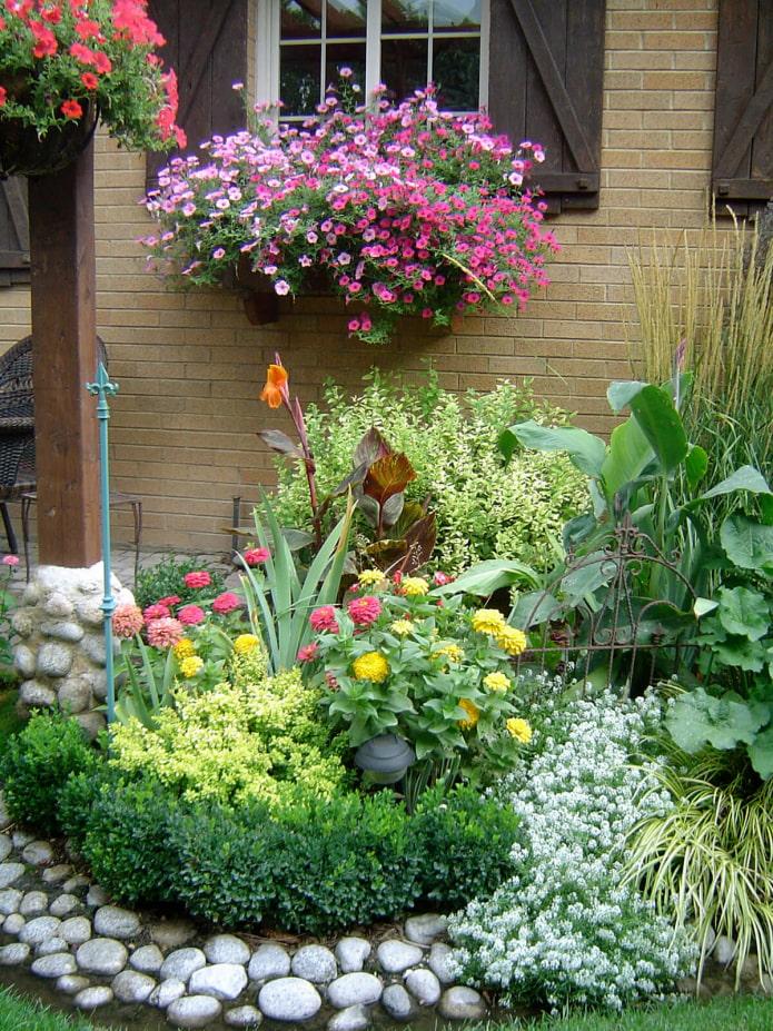 Jardin fleuri près de la maison