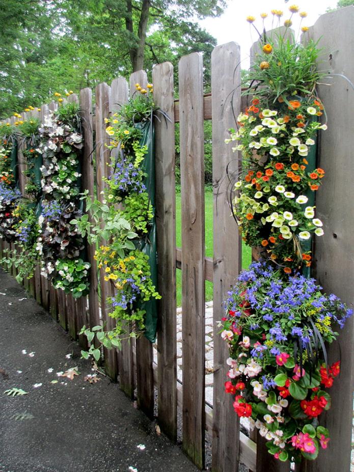 Parterre de fleurs sur la clôture