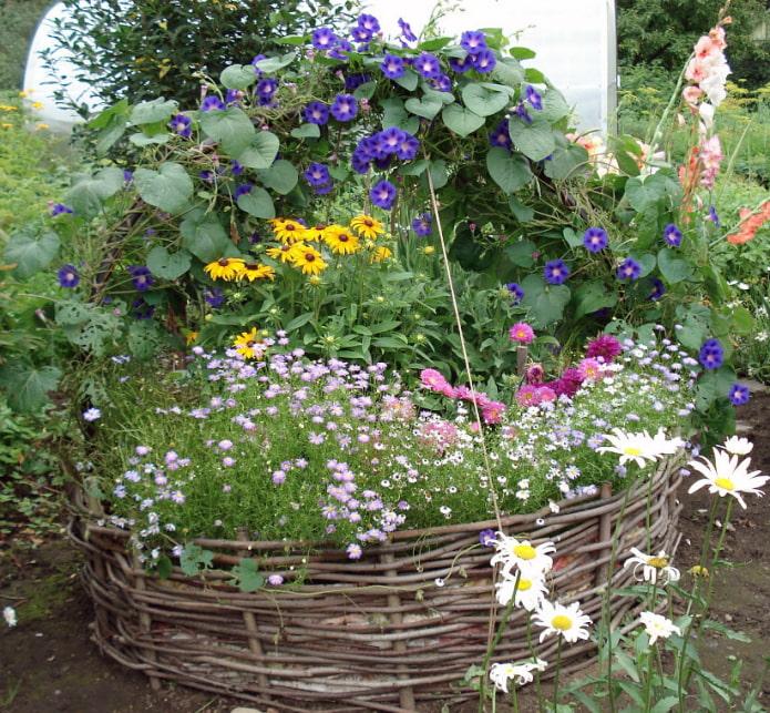 Tisser autour du parterre de fleurs