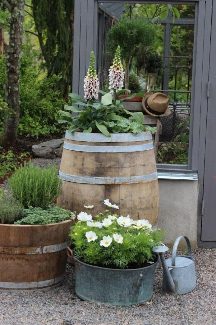 Des fleurs dans un tonneau