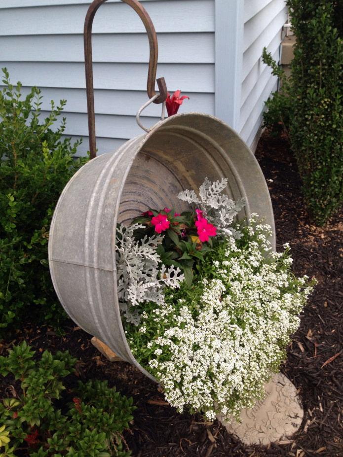 Fleurs dans une auge