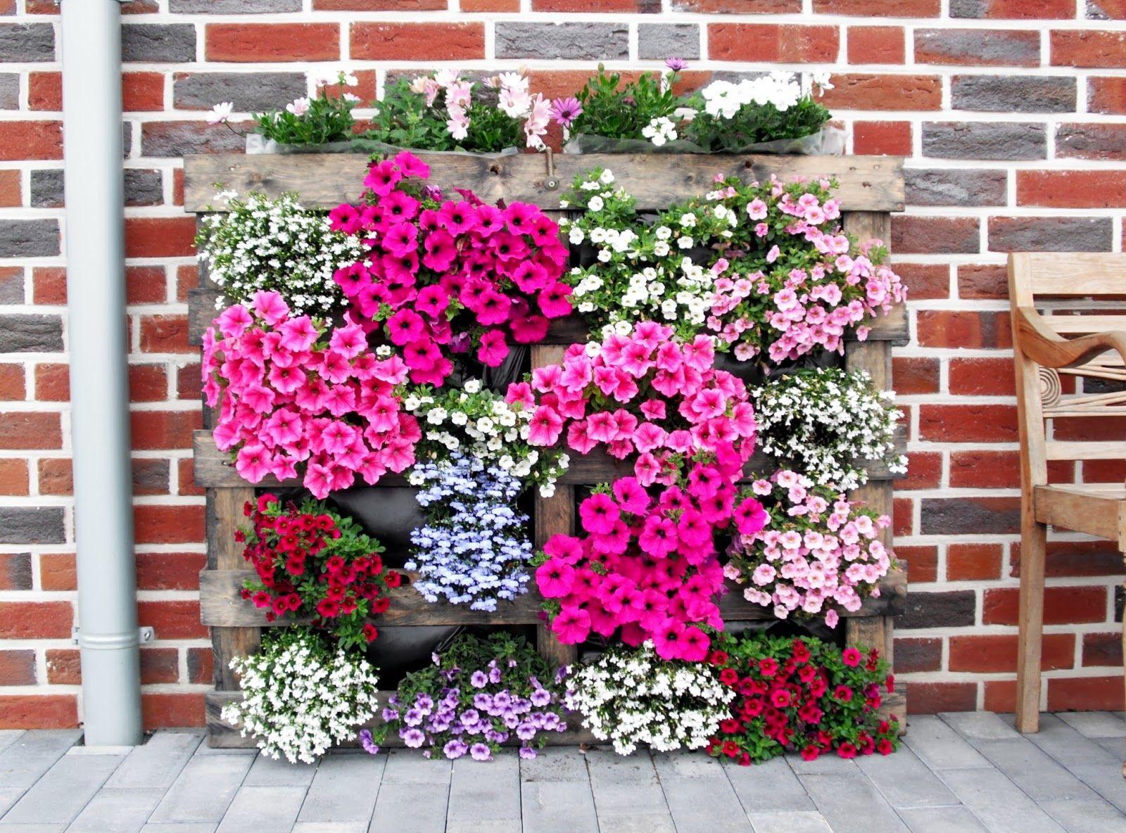 Comment faire un parterre de fleurs vertical ?