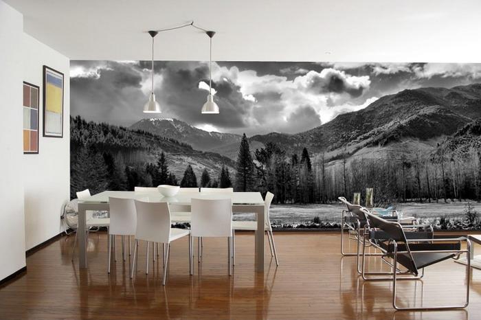 Paysage noir et blanc sur tout le mur du salon