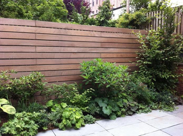 buissons par une clôture en bois