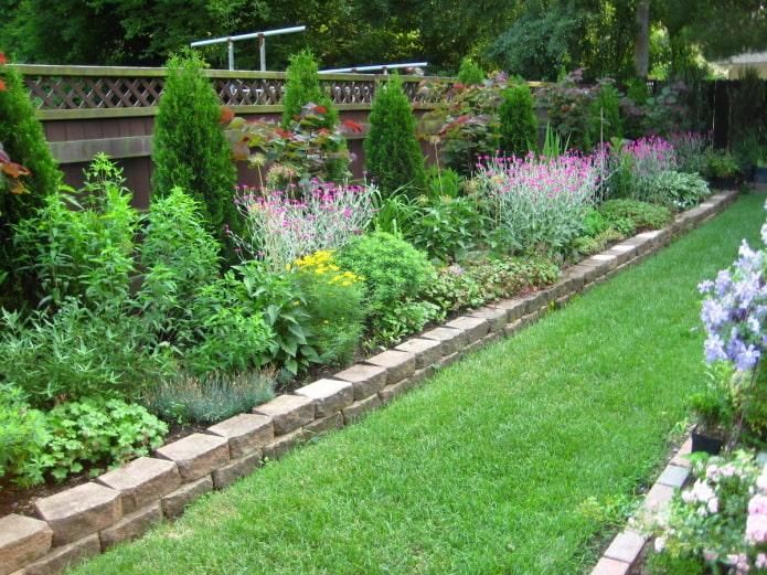 mélange de parterres de fleurs à la clôture