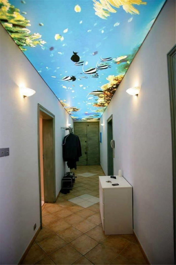 structure de plafond tendu avec impression photo