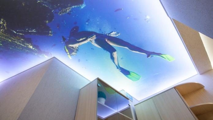 Plafond 3d avec l'image de la mer et d'un plongeur