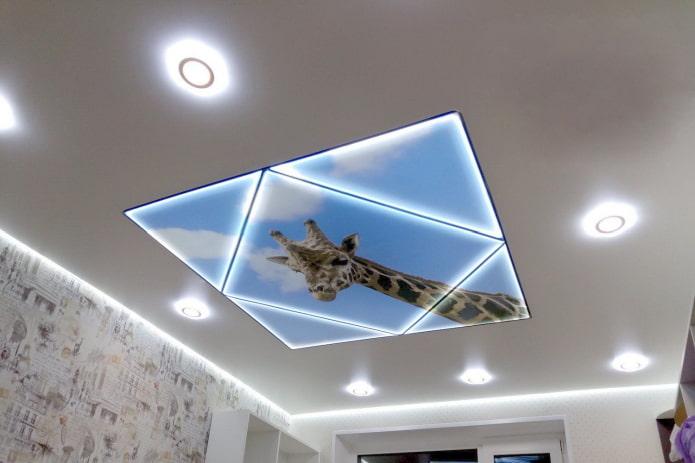 plafond avec une image d'une girafe