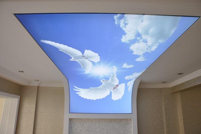 plafond augmentant l'espace