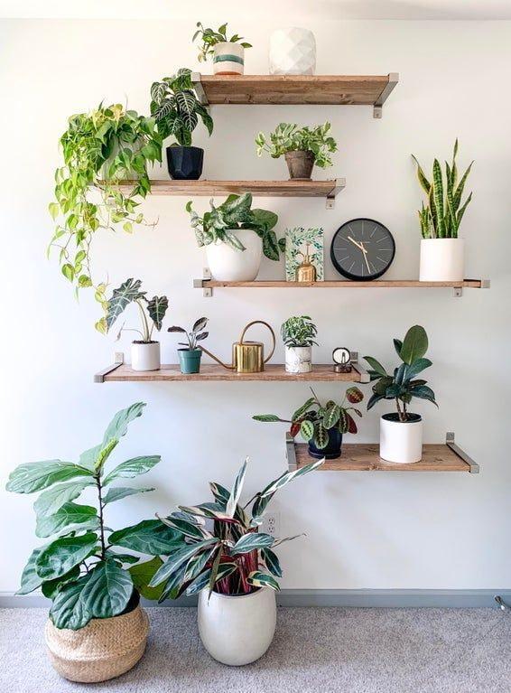 Étagères en bois au mur