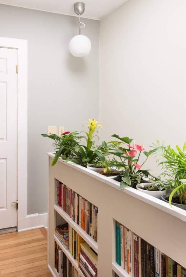 Rack avec des plantes