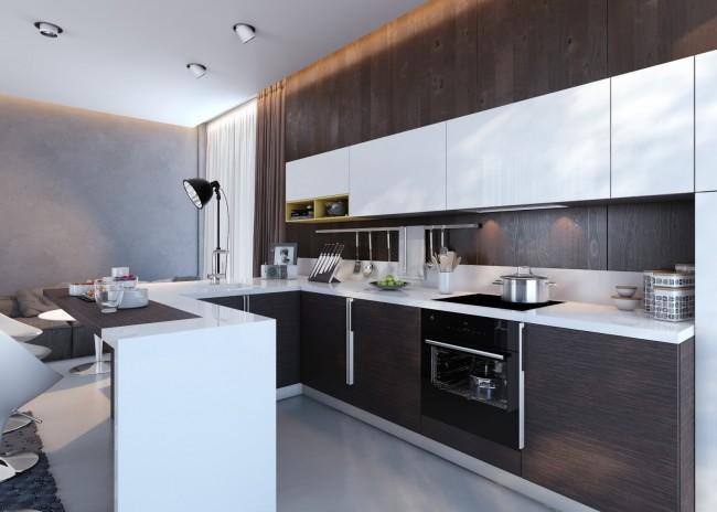 Cuisine de studio moderne, conçue dans une palette de couleurs stricte : wengé brun foncé combiné avec du blanc et du gris clair