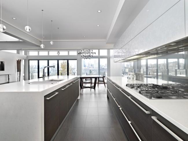 Cuisine-studio lumineuse très spacieuse avec des accessoires en wengé naturel dans des tons sombres