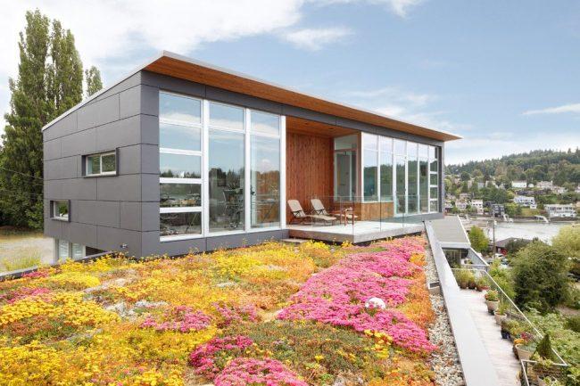 Maison à un étage avec une façade en verre depuis les fenêtres