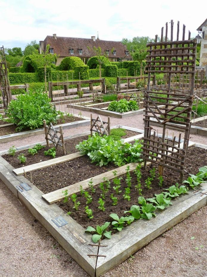 espace jardin dans le jardin