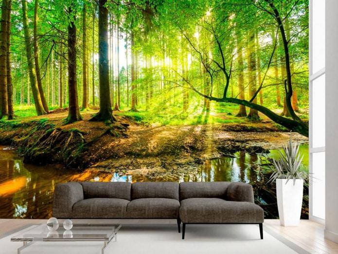 fond d'écran de la forêt