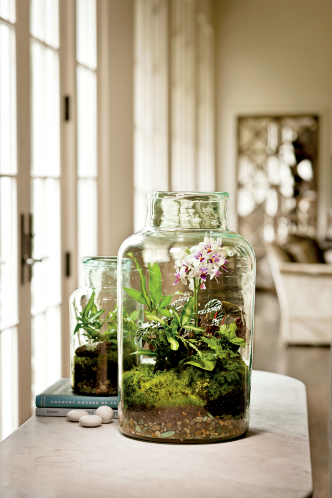 Les floriculteurs expérimentés peuvent se permettre d'organiser une orchidée dans une composition dans un petit florarium, en ramassant un bocal en verre transparent de la taille appropriée