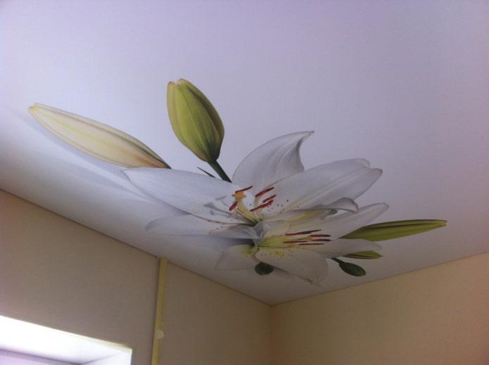 toile extensible blanche avec des fleurs