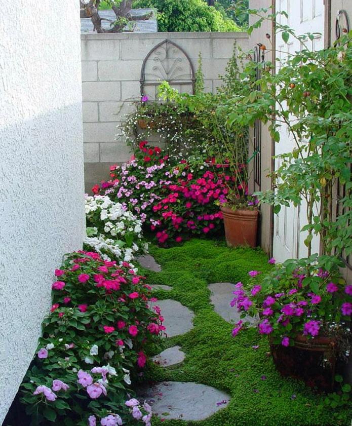 Parterres de fleurs le long de la clôture