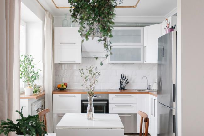 Cuisine blanche avec plantes d'intérieur