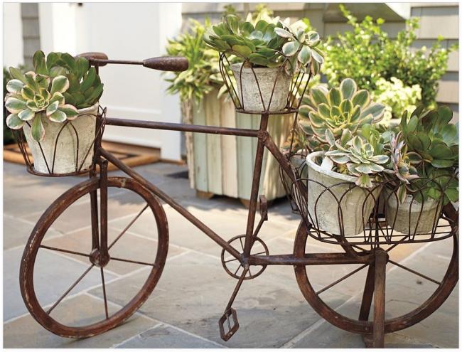 Il est devenu populaire de décorer les parcelles de jardin avec de vieux vélos, car ils conviennent parfaitement au rôle de support pour pots, bacs et pots de fleurs.