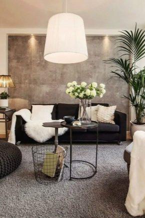 Les subtilités de la conception de la salle d'une superficie de 18 m².  m dans l'appartement