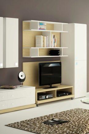 Meubles d'armoire pour le salon: de belles options à l'intérieur