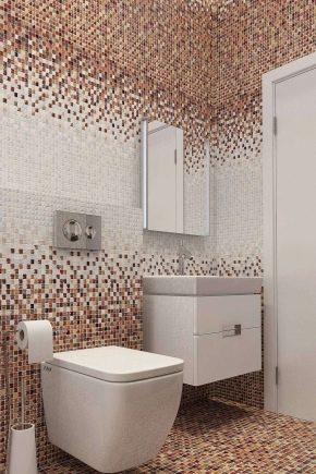 Mosaïque dans les toilettes : exemples de finitions spectaculaires