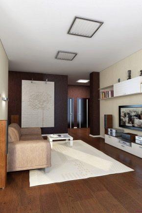 Rénovation du hall dans un appartement de 18 m².  m : disposition et zonage de l'espace