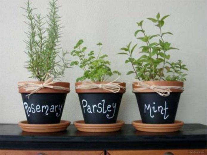 pots peints avec inscriptions