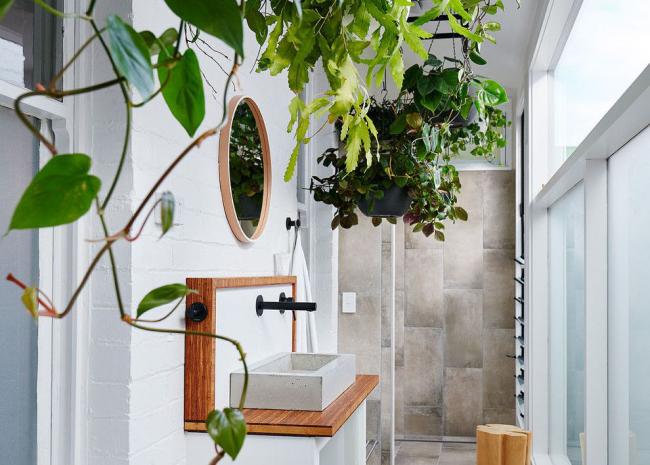 Décoration d'intérieur intéressante dans un style écologique