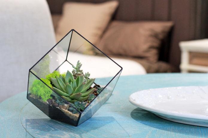 verre de florarium